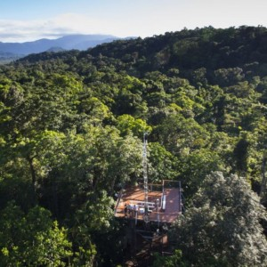 things-to-do-in-the-daintree-discovery-centre - things to do in Cairns