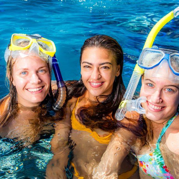Cairns Great Barrier Reef Tour, Daintree Rainforest and Kuranda