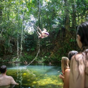 Cairns to Cape Tribulation Guided 2 Day Tour