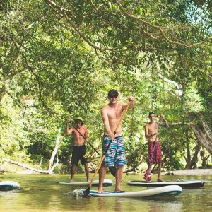 Stand Up Paddleboarding in North Queensland's Rainforest