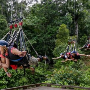AJ Hackett Giant Jungle Swing