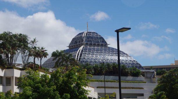 Cairns Zoom & Wildlife Dome