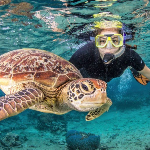 Cairns Tour Package Reef, Rafting and Skydiving (3 Day)