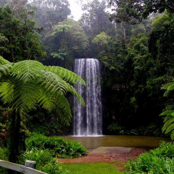Cairns Tropical Getaway (2 day)