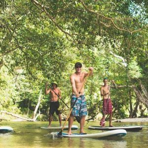 Standup Paddle Boarding in North Queensland's Rainforest