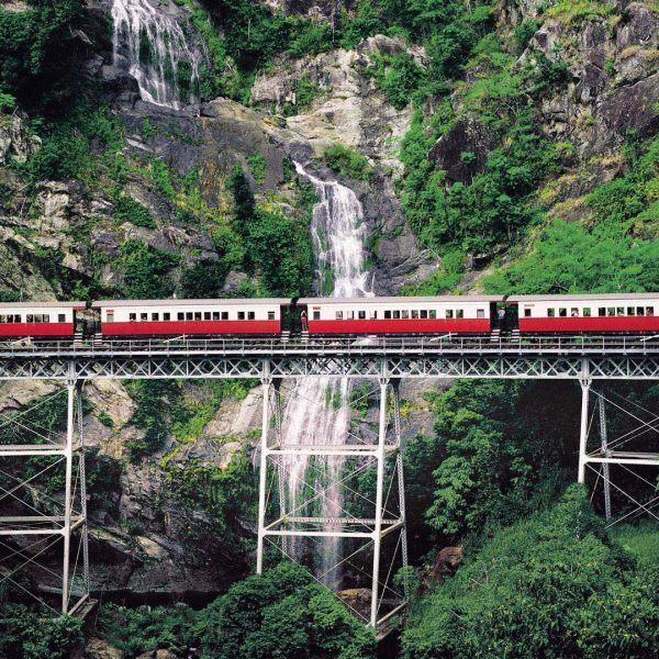 Kuranda Rainforest and Dinner Cruise