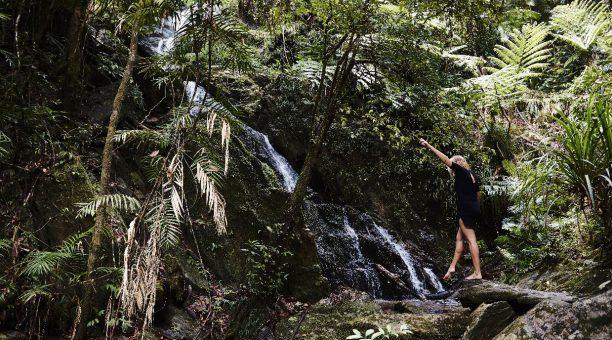 Onsite Waterfall